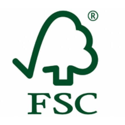 fsc-logo-square
